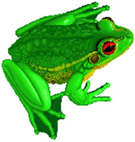 Froggy Set Kaosjumper Kodok gambar kodok animasi bergerak lucu gambar kartun kodok dp bbm animasi bergerak lucu terbaru