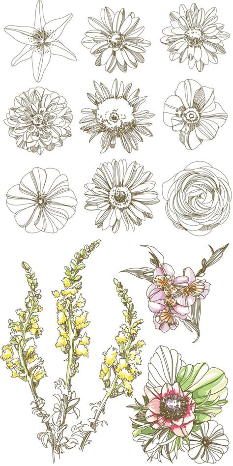 retro drawing line drawings of vintage flowers www pixshark com