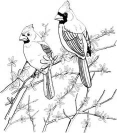 Two Red Cardinals Coloring Page  SuperColoringcom sketch template