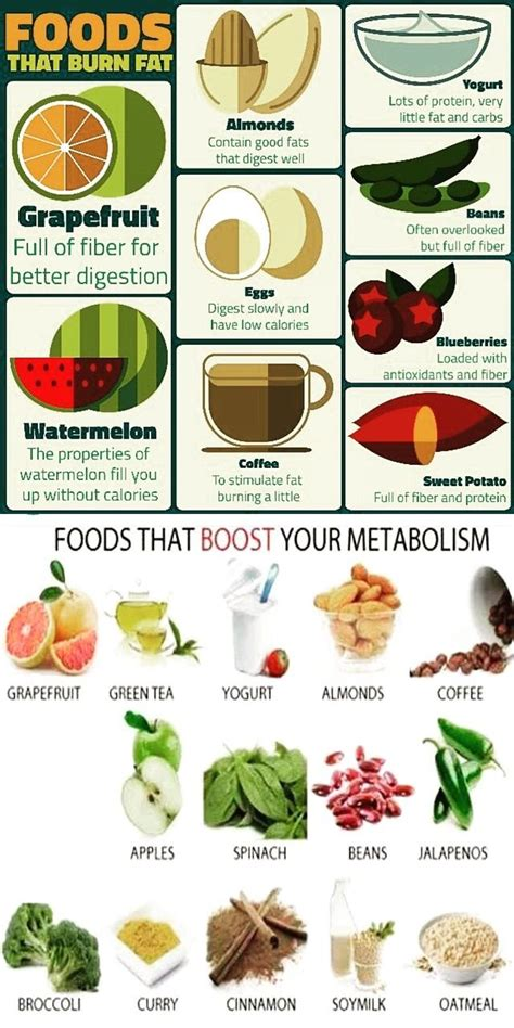 5 vegetables that boost metabolism foods that burn and boost your metabolism pictures