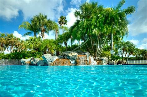 Orlando Florida Search International Palms Resort Conference Center Updated 2018 Prices Reviews