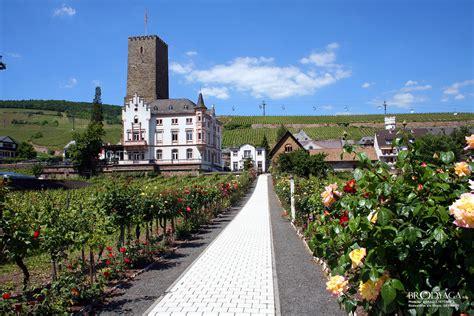 Free Search Germany Ruedesheim Am Rhein Travel Photo Brodyaga Image Gallery Germany Rhineland