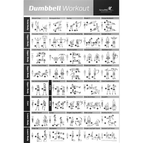 full body dumbbell workout no bench amazon com dumbbell workout exercise poster strength