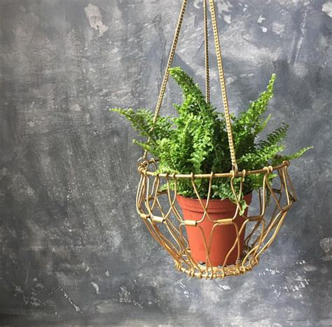 Wire Hanging Basket Planter by Best 20 Hanging Wire Basket Ideas On Wire