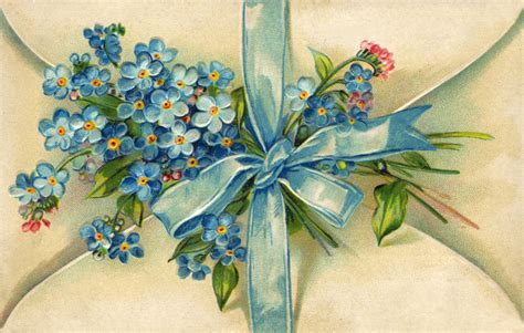 printable forget me not flowers 301 moved permanently