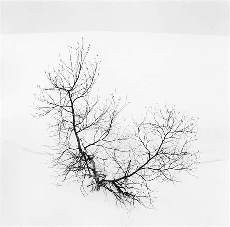 forms of japan michael 3791381628 michael kenna forms of japan monovisions