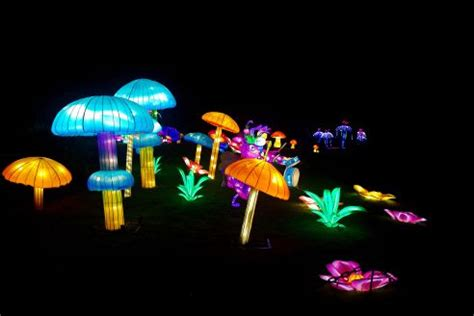 festival of light birmingham festival of lights birmingham botanical garden 2016