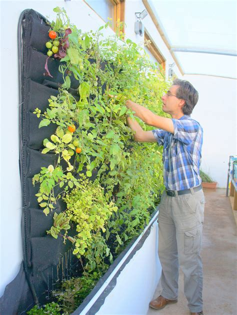 Aquaponic Vertical Vegetable Garden Florafelt Vertical How To Make A Vertical Wall Garden