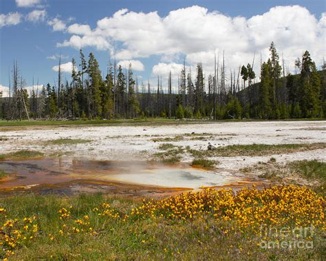 yellowstone landscape photograph by flying turkey