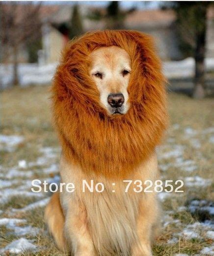 golden retriever wig festival pet costume mane wig for large dogs costume for dogs
