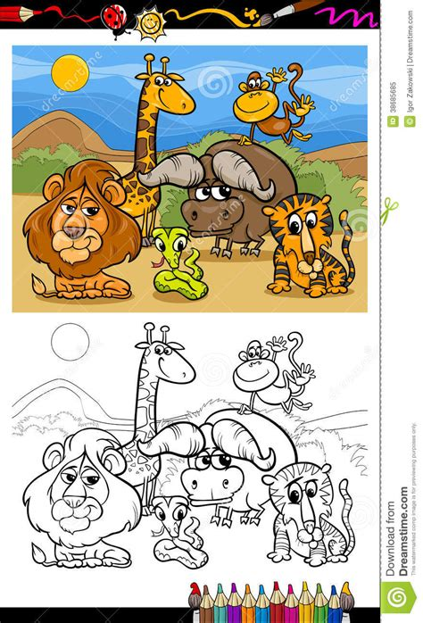colouring book for adults south africa animals coloring page royalty free stock