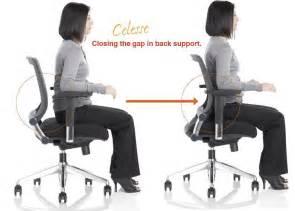 Ergoflex ergonomic mesh place best lumbar support for office chair