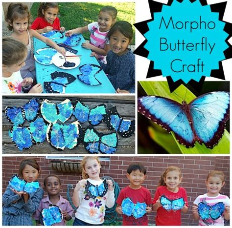 south crafts for make a tropical blue morpho butterfly craft