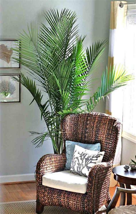 Plantes D Interieur Decoration by La D 233 Coration D Int 233 Rieur Avec De Grandes Plantes D Int 233 Rieur