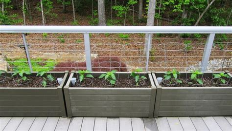 Pepper Planter by Our Deck Planters 54 Peppers And Counting