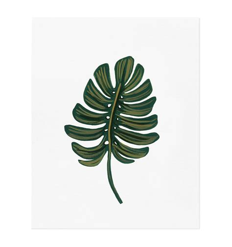 Leaf Print monstera leaf print by rifle paper co made in usa