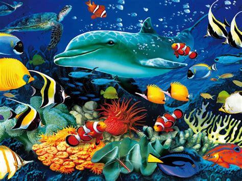 ocean underwater world marine life dolphin sea turtle
