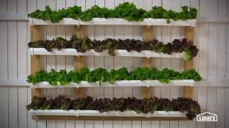 Displaying 19 gt images for hanging strawberry garden gutter