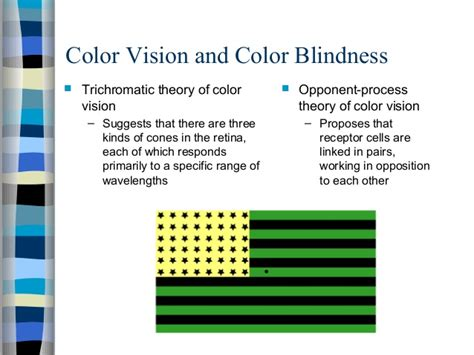 trichromatic theory of color vision asas psikologi sensation and perception