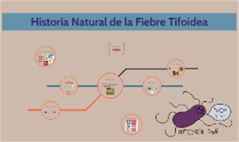 cadena epidemiologica fiebre tifoidea historia natural de la fiebre tifoidea by isaac espinoza