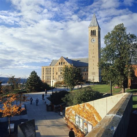 Cornell Mba Ranking by Cornell Profile Rankings And Data Us News