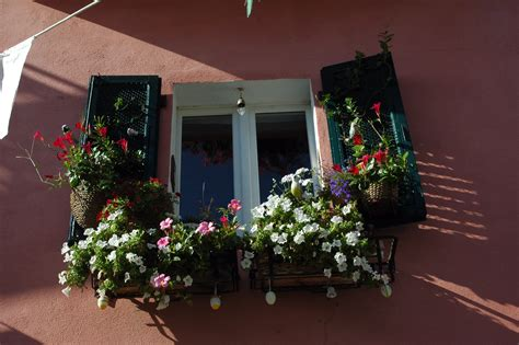 fioriere per davanzale finestra come creare un davanzale fiorito soluzioni di casa