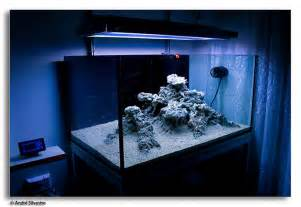 reef aquascaping reef2reef saltwater and reef aquarium forum