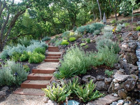 Drought Tolerant Landscaping Ideas Turiace Landscaping