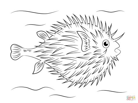 Tropical Fish Coloring Pages by Tropical Fish Coloring Tropical Fish Coloring