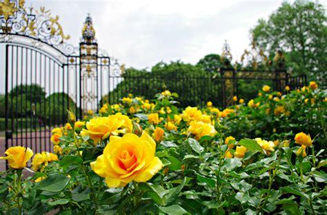 Garden Arch Regents Park Return To Regent S Park Garden Reneedezvous