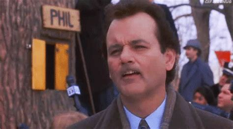 groundhog day giphy groundhog day was one of the greatest by bill murray