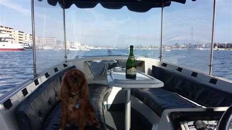 duffy boats of newport beach the sea and a bottle of chagne all to herself yelp