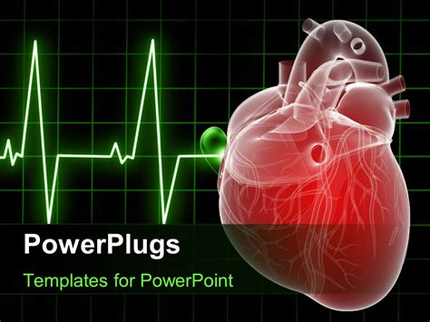 Powerpoint Template Medical Background With Anatomy Depiction Of A Human Heart 16103 Powerplugs Templates
