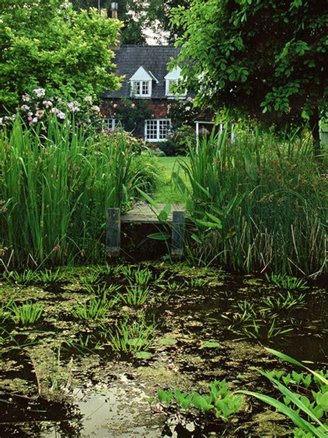 about arcadia garden design working in brighton sussex