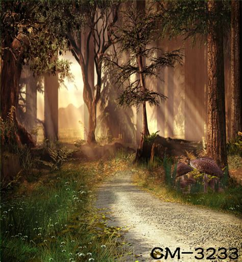 themes for his photographs highdefinition picture free 5x7ft fairy tale nature forest photography vinyl