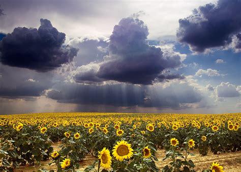 imagenes recursos naturales para imprimir recursos naturales de la argentina info taringa