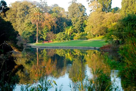 Royal Melbourne Botanical Gardens 5 Things To Do Around Melbourne Travel Lifestyle Of Your Dreams