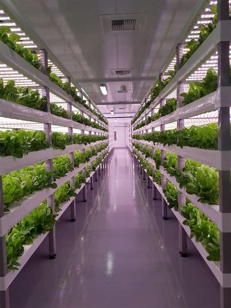 vertical farming   future usda