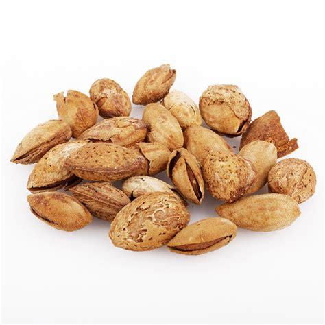 Kacang Almond 500gr Grosir kacang almond sultan grosir sajadah murah sarung murah oleh oeh haji grosir kurma air zam