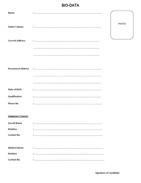 some new resume format templates 2013 free resume
