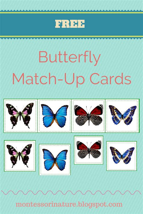 printable montessori cards free pre reading printables montessori nature