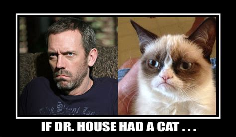 House Memes - dr house face meme www imgkid com the image kid has it