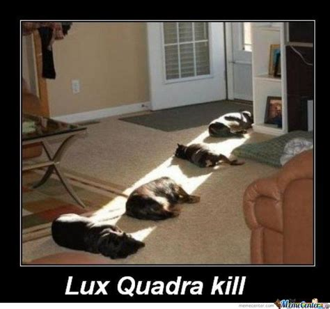Lux Memes - lux quadra kill by 3bood meme center