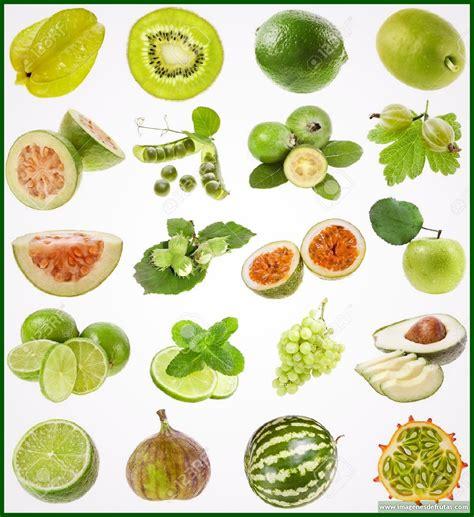 imagenes vegetales verdes imagenes de frutas y verduras verdes archivos imagenes