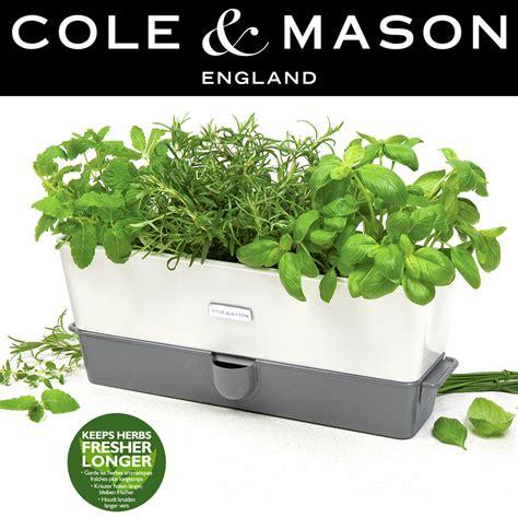 cole mason self watering indoor herb garden planter cole mason self watering triple potted herb keeper cook