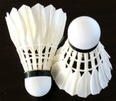 alat  digunakan  bermain bulutangkis olah tubuh