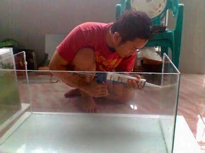 membuat aquarium dunia air