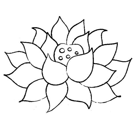 coloring pages of lotus flowers frog sitting on lilypads and lotus flower coloring pages