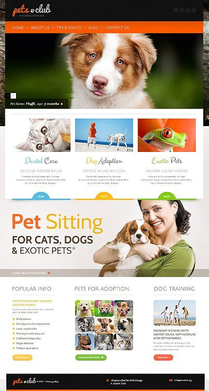 themes bootstrap pets 304 best best web templates images on pinterest role