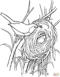 coloring page nest 1000 images about basic line on